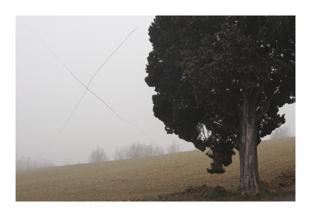 Entanglement 02